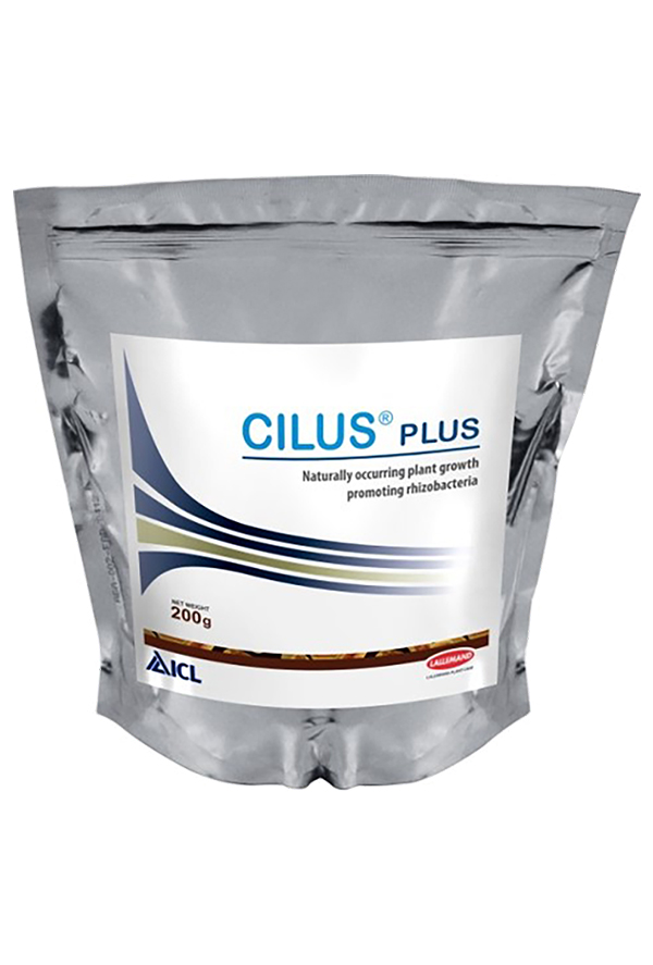 Cilus® Plus